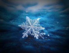 snowflake on blue