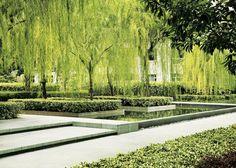 <b>Cicada Landscape Book Landscape Sketch, Landscape Architecture Design, City Architecture, Urban Landscape, Residential Landscaping, Modern Landscaping, Modern Garden Design, Contemporary Garden, Garden Pool