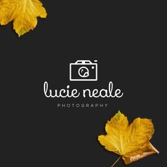 INSTANT DOWNLOAD, DIY Logo, Camera Logo Download, Unique Photography Logo, Handwritten Logo, Calligraphy Logo, Cheap Logo, Feminine Logo by WithPassionDesign on Etsy https://www.etsy.com/listing/257538655/instant-download-diy-logo-camera-logo