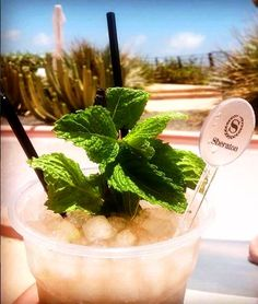 At the Sunset Bar you'll find the perfect mojitos to cool on this hot sunny day #thankyou @cocktail_maxi69