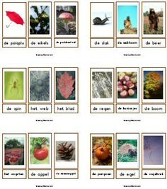 Woordkaarten downloads – Juf Sanne