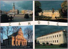 Zamość Mozaika Katedra Pałac Ratusz