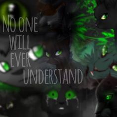No One Will Ever Understand Hollyleaf New Warriors Warrior Cats Series Cat Character