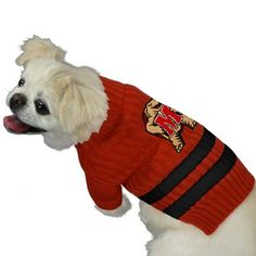 Maryland Terrapins Red Pet Sweater Small *** Read more at the image link.