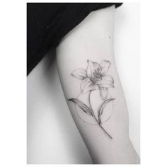 7 Best Lily Tattoo Meaning Images Lily Tattoo Meaning Lillies