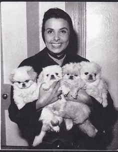 Lena Horne with pekingese
