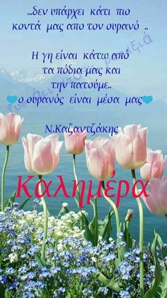 Greek Quotes, Good Morning, Humor, Words, Gifs, Wallpapers, Plants, Buen Dia, Bonjour