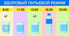Правильный питьевой режим — наше всё. Если вы хотите быть здоровым и красоваться шикарной фигурой, следуйте одному правилу.
