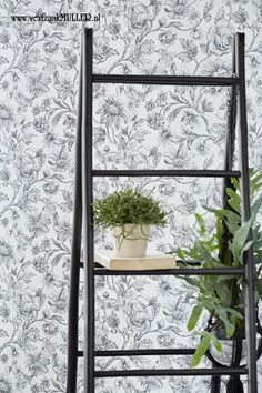 Black & Light Wallpaper