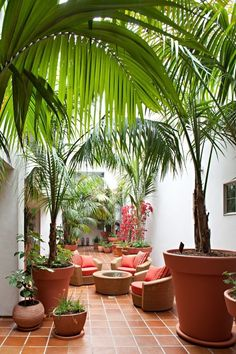 Eclectic Patio with exterior tile floors