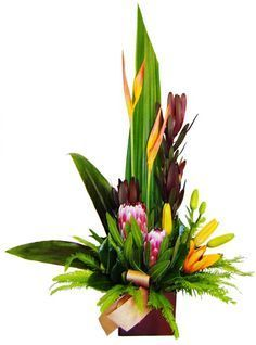 Exotic Flower Arrangements | LAVA - Tropical blooms in a pot More