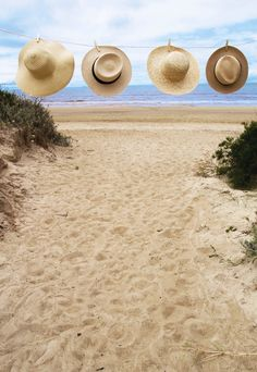 beach hats ready to be worn // take your pick //