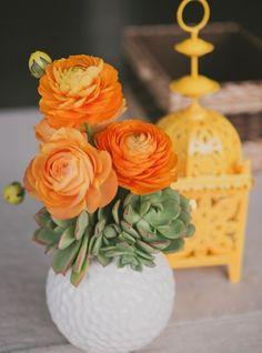 Orange ranunculus with succulents