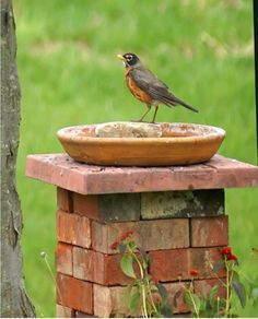 9 dazzling DIY garden decor ideas with old bricks – Garden Projects Brick Projects, Backyard Projects, Garden Projects, Brick Crafts, Outdoor Projects, Backyard Ideas, Recycled Brick, Diy Bird Bath, Bird Bath Garden