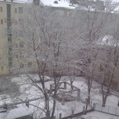 Suprise snow in Helsinki