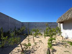Gallery of Wabi House / Tadao Ando Architect and Associates - 18