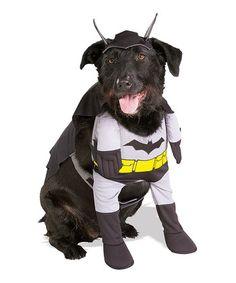 Little Batman Pet Costume
