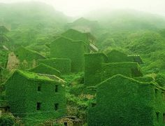 En Chine, un village de pêcheurs fut abandonné par ces habitants et depuis la végétation a entièrement recouvert l'endroit. La nature a reprit ses droits et le résultat est magique
