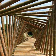 Amazing bamboo bridge architecture