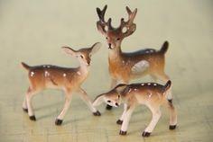 A Family of Deer