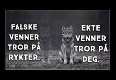 FALSKE VENNER ... | SKUFF.no - Vitser Og morsomme Bilder Fake Friends, Life Words, Movies, Movie Posters, Photo Illustration, Film Poster, Films, Popcorn Posters, Film Posters