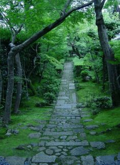 Stone Path Through A Gorgeous Woodland Garden