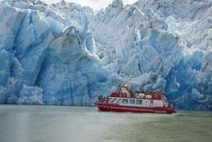 Grey Glacier on Boat Sailing - Torres del Paine NP, Chile