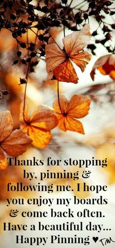 Thanks for stopping by, pinning & following me. I hope you enjoy my boards & come back often. Have a beautiful day... Happy Pinning! <3 Tam <3