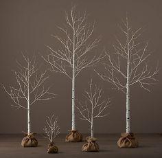 Winter Wonderland Trees - Birch | Restoration Hardware