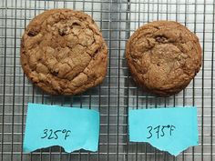 """The Science of the Best Chocolate Chip Cookies"" My inner nerd and foodie loves this!"