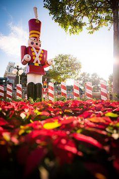 New Magic Kingdom Christmas Photos - Disney Tourist Blog Magic Kingdom Christmas, Disney Magic Kingdom, Disney Christmas, Christmas Photos, Christmas Unicorn, Disney Tourist Blog, Walt Disney World Vacations, Disney Trips, Disney Parks