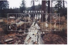 30 Free High-Resolution Photoshop Brush Sets for 2020 Adobe Photoshop, Photoshop Illustrator, Photoshop Design, Photoshop Brushes, Photoshop Elements, Photoshop Tutorial, Photoshop Actions, Lightroom, Psd Brushes