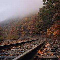Film Photo By: Owen Luther Lehigh River Gorge,... - I Still Shoot Film