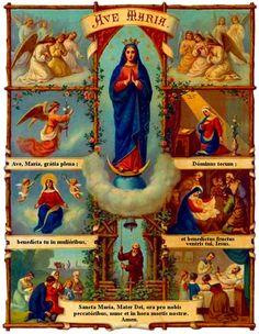 Dios te salve maria llena eres de gracias el Señor es contigo bendita tu eres entre todas las mujeres y bendito es el fruto de tu vientre Jesus    Santa Maria Madre de Dios ruega por nosotros los pecadores ahora y en la hora de nuestra muerte Amen.