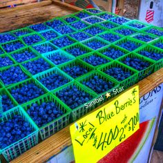 Sunday mornings on Sanibel, everyone goes to the farmers market #blueberries #sanibelstar #island