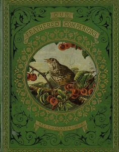Our feathered companions, or, Conversations of a father with his children about sea-birds, song-birds, and other feathered tribes that live in or visit the British Isles, their habits.