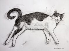 Sleeping #Kitty #Art A sprawling #cat enjoys it nap. #Drawing sketched in #pencil.