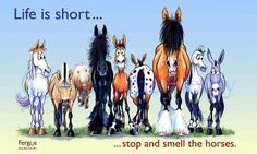 """Life is short ... stop and smell the horses."""