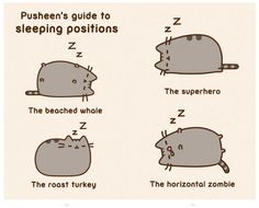 Pusheen's guide to sleeping positions