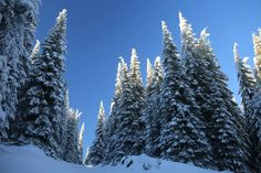 Hó-, és jégvarázs a székelyek szent hegyén - Hargita-hegység - Székelyföld - Erdély  fotó Fodor István Amazing Nature, Outdoor, Outdoors, Outdoor Games, The Great Outdoors