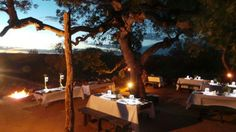 Dinner served out in the Balule Game Reserve Marula Tree Boma Kruger National Park, National Parks, Private Games, Game Reserve, South Africa, Safari, Tours, Dinner