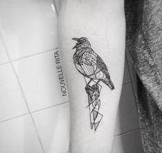 tiny animal tattoos   Artistic Animal Tattoos – Fubiz Media