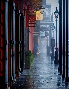 Foggy Morning In French Quarter, New Orleans, Louisiana, USA (By James Neeley) Louisiana Usa, New Orleans Louisiana, New Orleans Bayou, New Orleans Art, Nebraska, Oklahoma, The Places Youll Go, Places To See, Voyage Usa