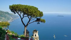 Costa Amalfitana. Positano, Cinque Terre, Honeymoon Destinations On A Budget, Tipping In Italy, Italy Places To Visit, Italy Coffee, Small Group Tours, Southern Italy, Amalfi Coast