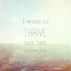 """Steering wheel don't mean it can drive/I want to thrive, not just survive"" From ""Thrive"" by Switchfoot"
