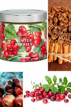Partylite Winter Berries SmartScents Fragrance Sticks NIB