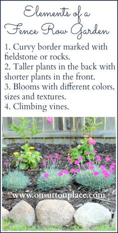 How To Plant A Fence Row Garden Elements of a Fence Row Garden Short Plants, Tall Plants, Potted Plants, Garden Shrubs, Garden Plants, Climbing Vines, Hardy Perennials, Garden Pictures, Garden Borders