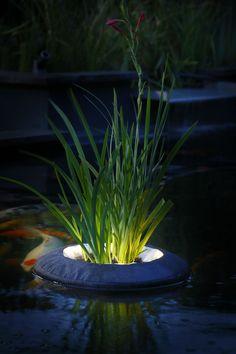 Floating plant island including led lighting