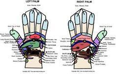 Printable Hand Reflexology Chart