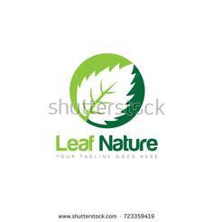 creative leaf logo design template